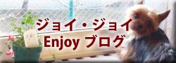 函館のフィットネススタジオJOY ブログ